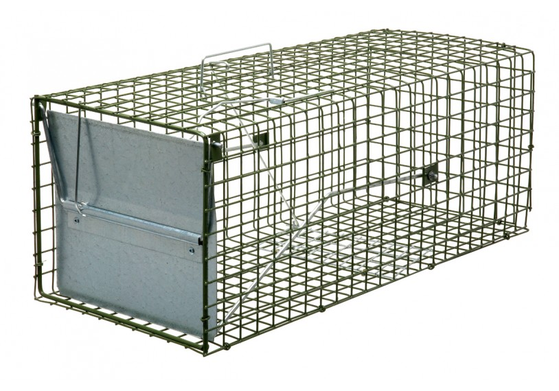 how to set a rabbit trap