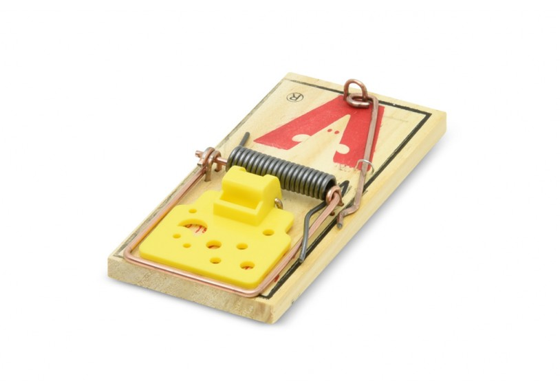 how to make a easy mouse trap